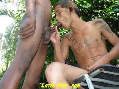 Latin Piss download